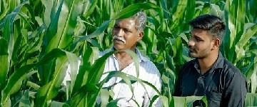 Syngenta in India