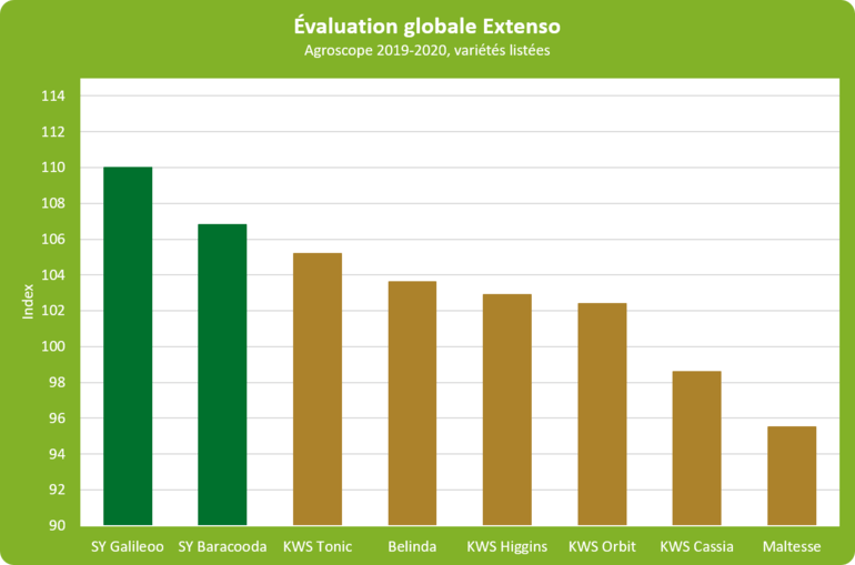Syngenta Hyvido evaluation_globale_extenso